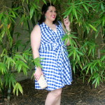 Style Saturday: Gingham Dress
