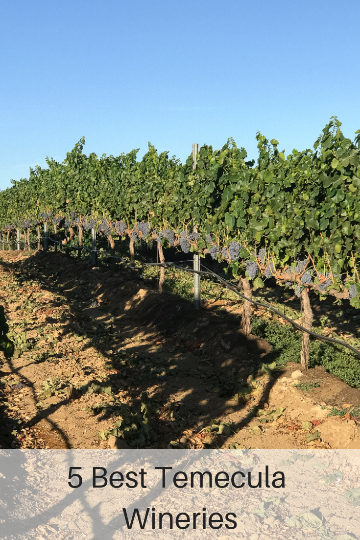The Fashionista Momma shares the 5 best Temecula wineries.