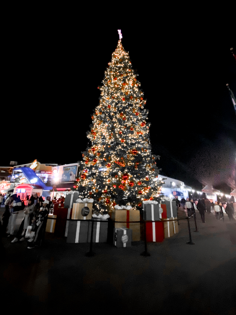 The Ultimate San Diego To San Francisco Road Trip For The Holidays featured by Top Family Travel Blog, The Fashionista Momma; Christmas Tree at Pier 39 in San Francisco