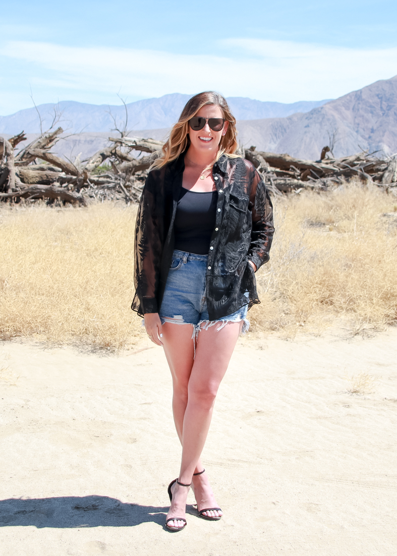 Must Wear Summer Trends featured by Popular US Style Blogger, The Fashionista Momma; woman wearing denim shorts and a shear top.