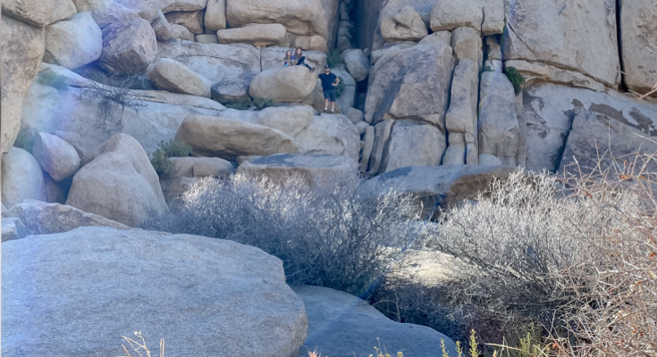 The Ultimate Day Trip To Joshua Tree National Park