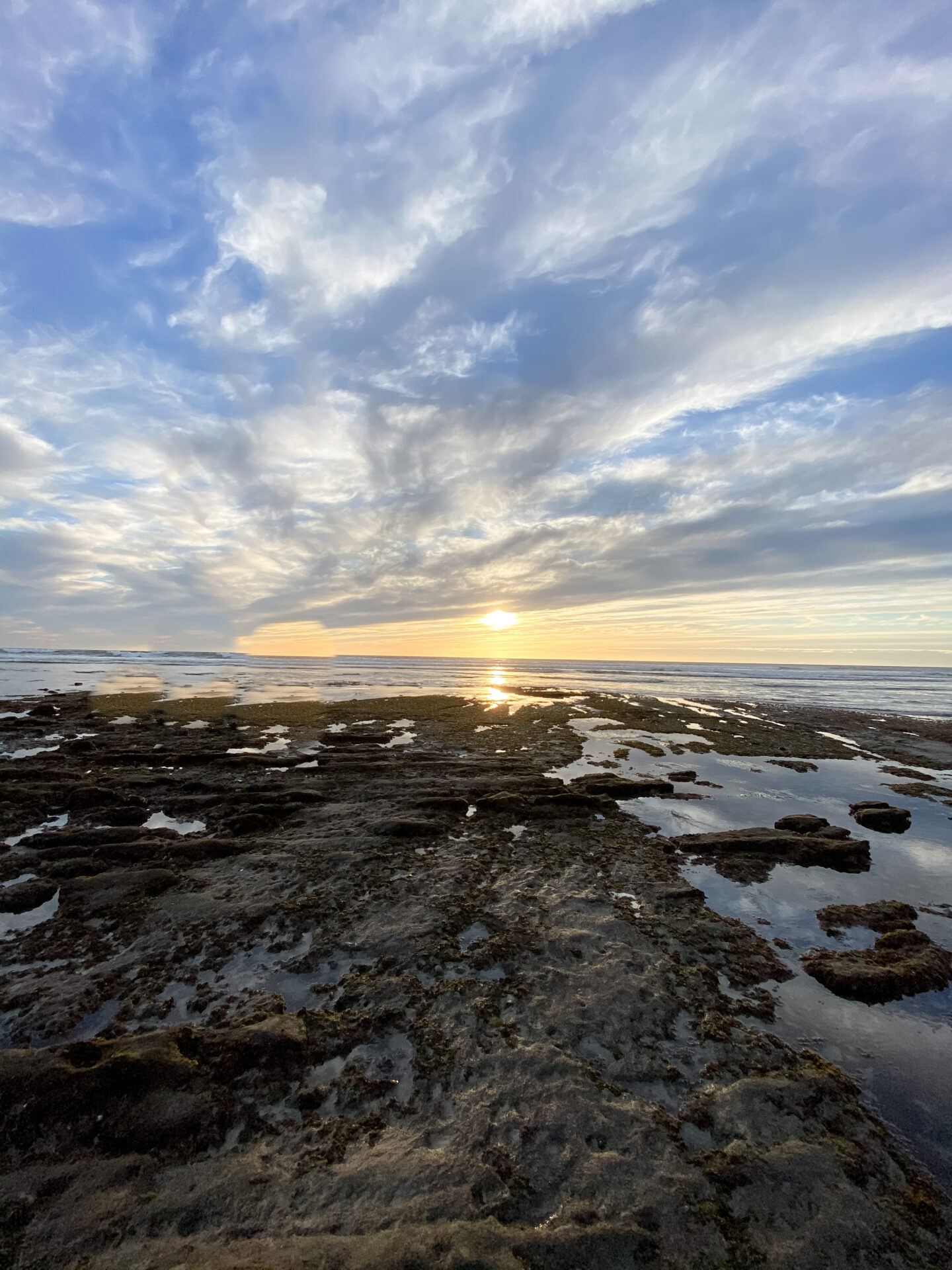 Local Love: 5 Best Things To Do In Orange County with kids this spring featured by popular US Travel Blogger, Style & Wanderlust; photo of tide pools